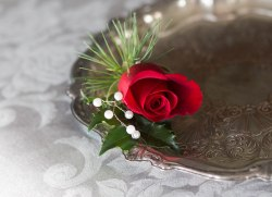Kenosha wisconsin winter wedding